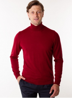 Men's wine rollneck in a fine knit